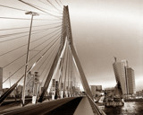 Erasmusbrug Rotterdam by rvdb, Photography->Bridges gallery
