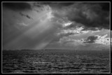 Searching For A Shelter by corngrowth, contests->b/w challenge gallery