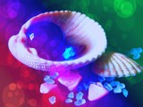 Surreal Shells by mesmerized, abstract->surrealism gallery