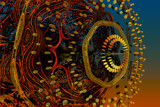 Effervescence by casechaser, abstract->fractal gallery