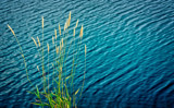 Hay Now by Eubeen, photography->water gallery