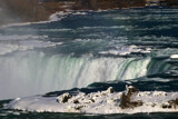 Brink of the Falls by woodsy, Photography->Landscape gallery
