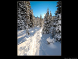 Burstall Pass Trail by d_spin_9, Photography->Landscape gallery
