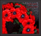 A N Z A C . . . . remembrance by LynEve, photography->general gallery