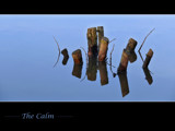 The Calm by Dehli, photography->shorelines gallery