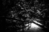 Cold Comfort by Eubeen, photography->landscape gallery