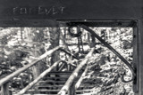 Forever by Eubeen, contests->b/w challenge gallery