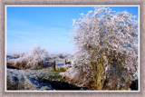Zeeland Winter 01 by corngrowth, Photography->Landscape gallery