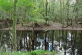Morris bridge by GomekFlorida, photography->landscape gallery
