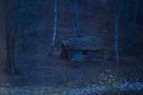 Old blacksmith by Blabarspaj, Photography->Landscape gallery