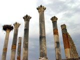 Volubilis Columns by reddawg151, Photography->Castles/Ruins gallery