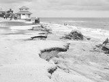 Storm Ravaged by Dextar_111, Photography->Landscape gallery