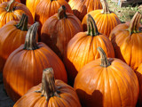 At the Pumpkin Patch by lilkittees, Photography->Food/Drink gallery