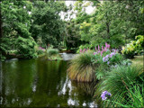 A Glade of Green by LynEve, Photography->Landscape gallery