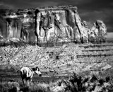 Navajo Country (pronounced Nava-Ho) by snapshooter87, photography->manipulation gallery
