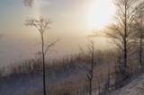 Joyful Christmas time by Inkeri, photography->landscape gallery