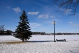 Winter Takes Hold On Pike Lake by tigger3, photography->landscape gallery