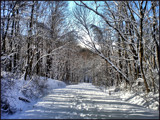 Winter Wonderland by amishy, Photography->Landscape gallery