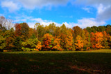 Roadside Colors _ Second Posting. by tigger3, Photography->Landscape gallery