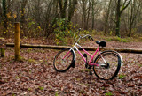 Lonely Bike by japio, photography->still life gallery