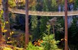 Adventure bridge by Inkeri, photography->bridges gallery