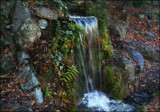 Winter In The Park - The Waterfall by LynEve, photography->waterfalls gallery