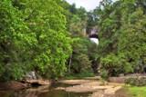 Virginia's Natural Bridge 2 by jeenie11, photography->bridges gallery