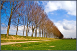 April Perspective by corngrowth, photography->landscape gallery
