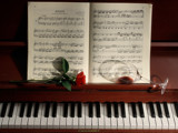 Piano by Paul_Gerritsen, Photography->Still life gallery