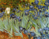 The Irises by Vincent van Gogh, Illustrations->Traditional gallery