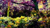 Garden of Eden by rozem061, photography->manipulation gallery