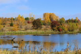 I Love Indian Summer by Pistos, photography->landscape gallery