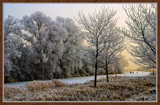 Winter In Zeeland 2009 (12) by corngrowth, Photography->Landscape gallery