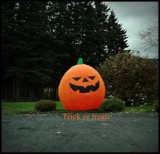 Trick or Treats by GIGIBL, photography->general gallery
