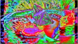 Psychedelic Butterfly by galaxygirl1, photography->manipulation gallery