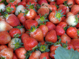 Strawberries  by Ed1958, Photography->Textures gallery