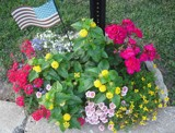 Memorial Day Tribute by Constance52347, photography->flowers gallery