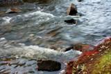 Bear Creek 2 by BrandyAdams77, Photography->Nature gallery