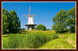 Greetings From Zeeland by corngrowth, photography->mills gallery