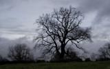 grey day... by fogz, Photography->Landscape gallery