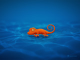 Gecko by vladstudio, Illustrations->Digital gallery
