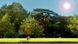 Chatsworth gardens by katiedz, Photography->Landscape gallery