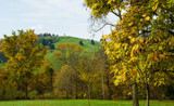 Montalto - Viewed from Monticello by luckyshot, photography->landscape gallery