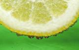 Fizzy Lemon by dmk, Photography->Macro gallery