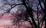 Violet Skies by renegaderider, Photography->Sunset/Rise gallery