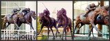 "Arlington Racecourse 5 - ""Against All Odds"" by trixxie17, photography->sculpture gallery"