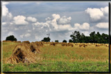 Ohio Amish Country 2 by Jimbobedsel, Photography->Landscape gallery