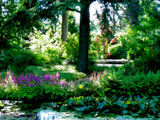 Dreams are made of by rvdb, photography->gardens gallery