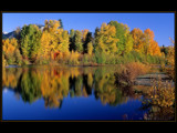 September Yellow by photoimagery, Photography->Landscape gallery