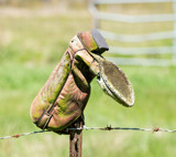 The Cowboy's Boot by PatAndre, photography->still life gallery